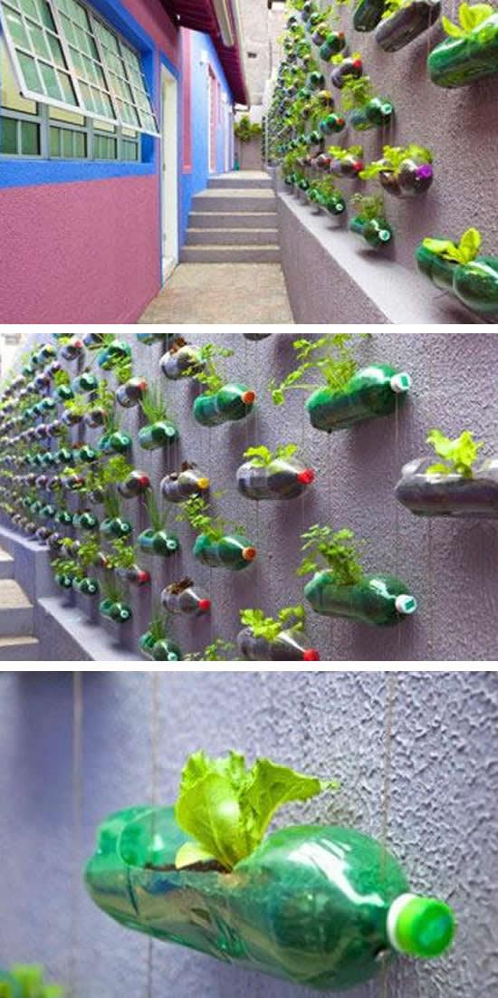 Jardim Vertical com Garrafas PET