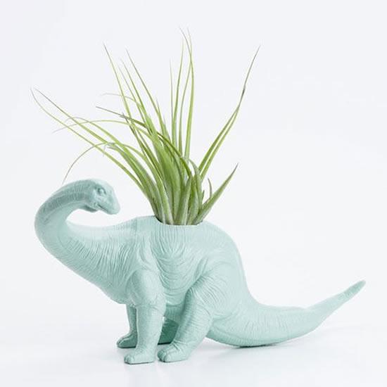 Suculentas em Dinossauros de Plástico