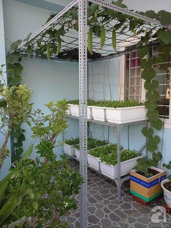 Treliças para plantas trepadeiras