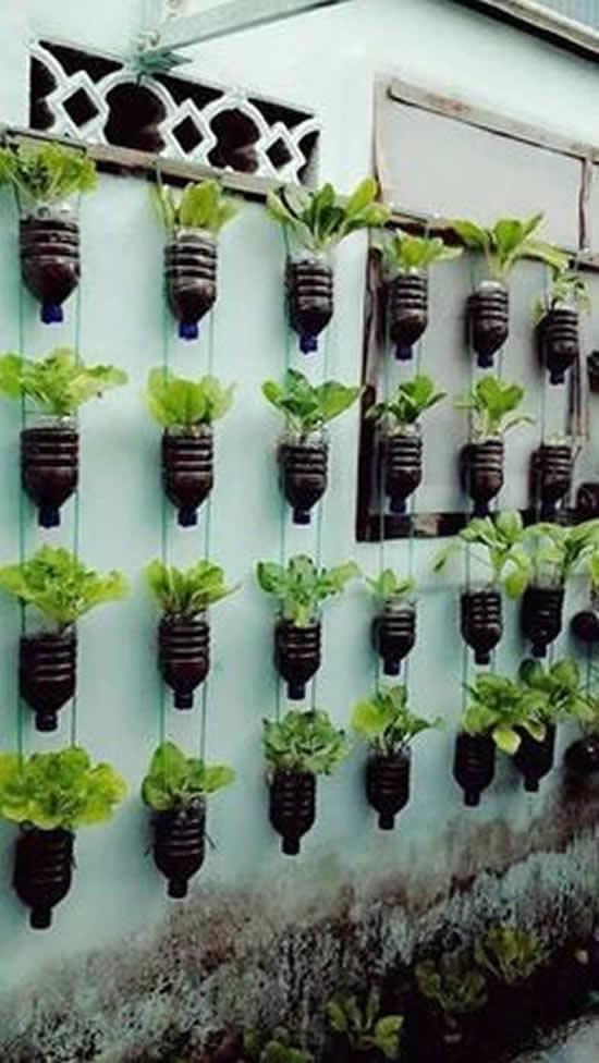 Como fazer horta caseira