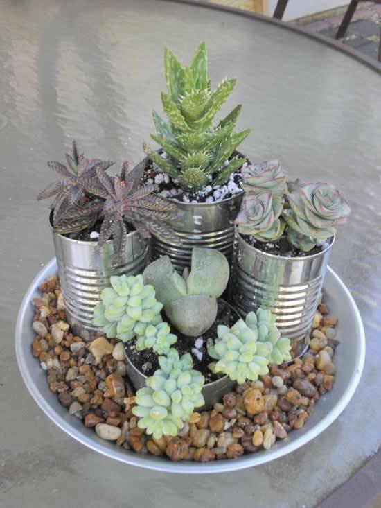 Decoração de Jardim com Mini Suculentas