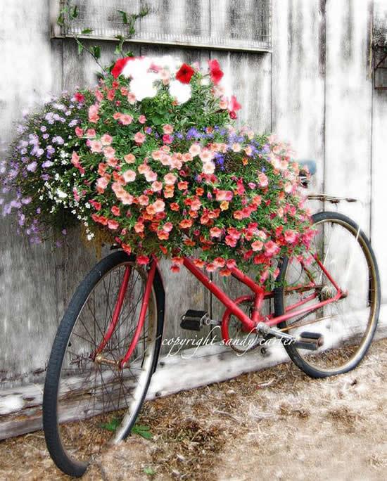 Decoração Linda com Bicicletas