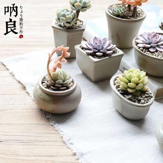 Vasinhos com Mini Suculentas