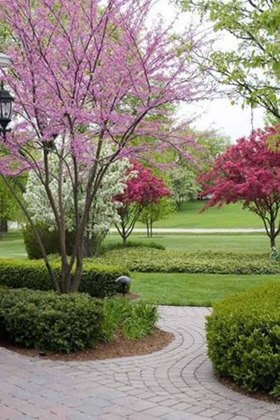Jardim Belíssimo