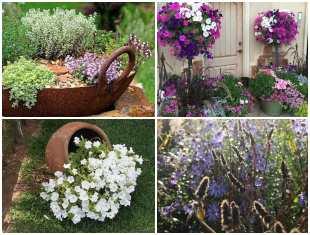 Decoração de jardim com flores