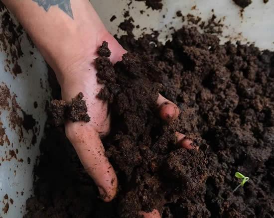 Como fazer composteira sem minhoca