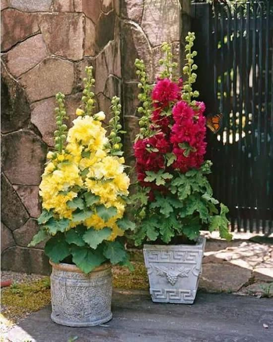 Decoração linda com flores