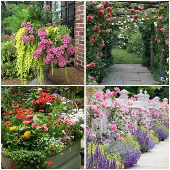 Inspirações com flores para jardim