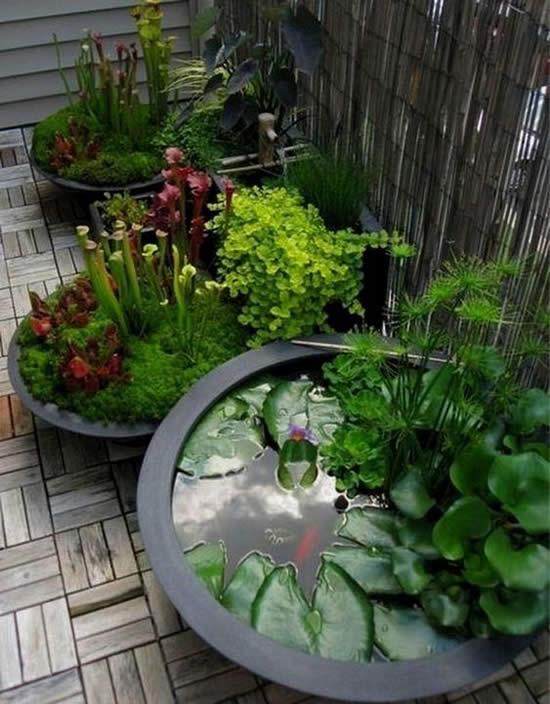 Dicas para jardins pequenos