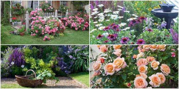 Jardins Floridos para Inspiração