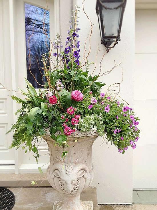 Lindas Flores no Jardim