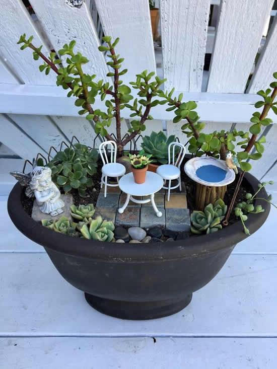 Mini jardins lindos com cactos e suculentas
