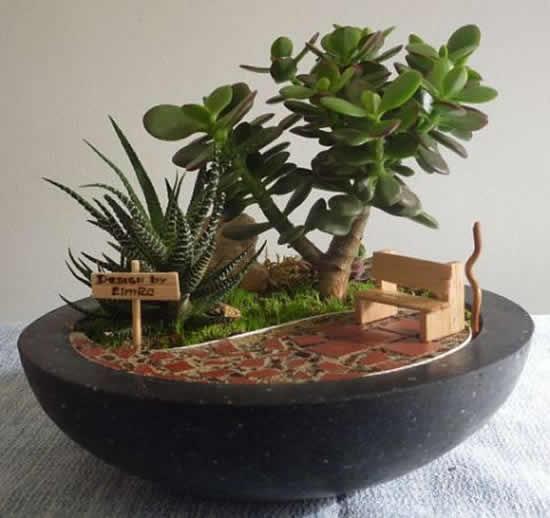 Lindo mini jardim de suculentas
