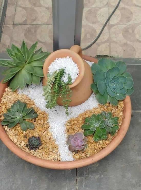 Mini jardins com suculentas e cactos