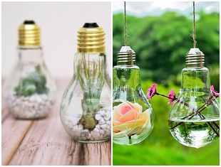 Ideias para plantar em lâmpadas