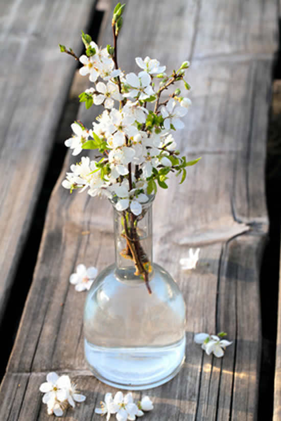 Vasos com garrafas para decoração