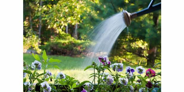 Como tirar o cloro da água da torneira