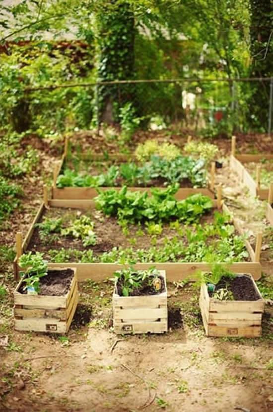 Horta com caixotes de madeira