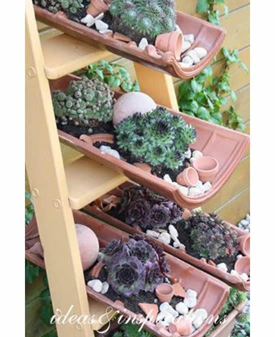 Plante em telhas
