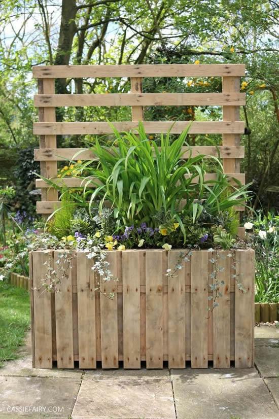 Lindas ideias para plantar em pallets