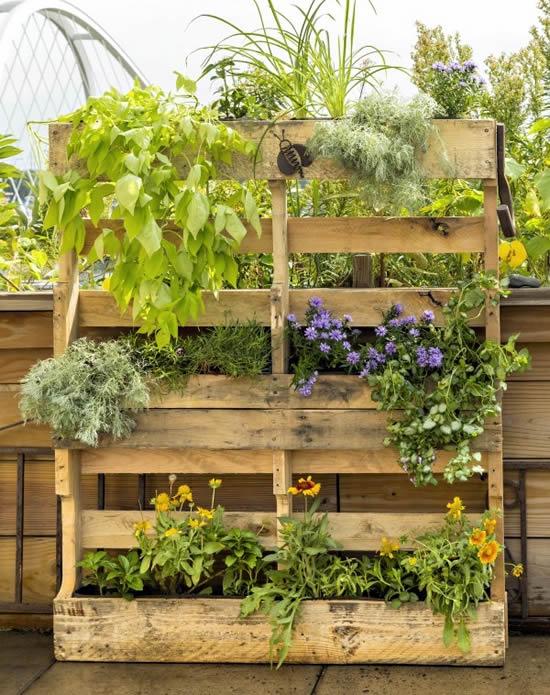 Plante em pallets e decore a casa