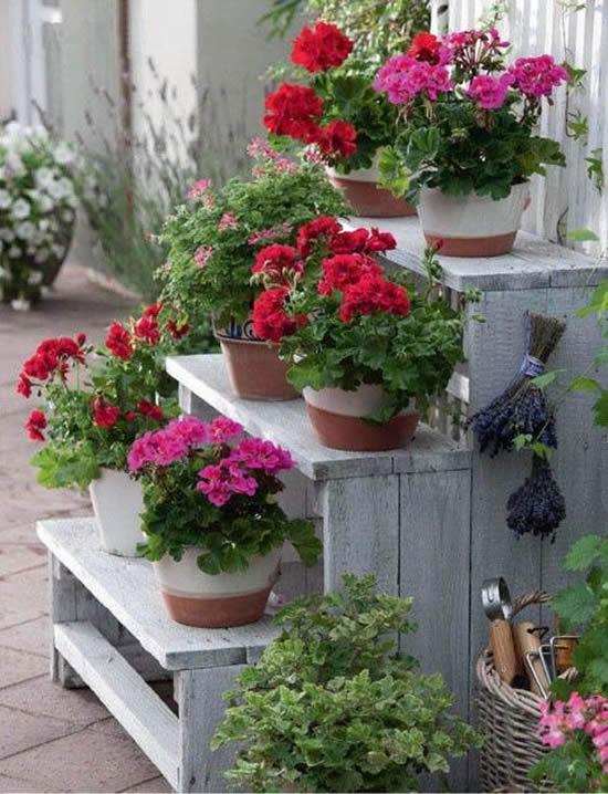 Vasos lindos com flores