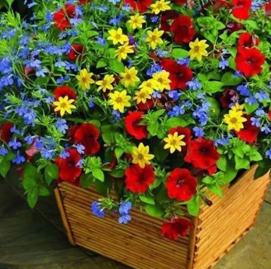 Decoração com flores em vasos