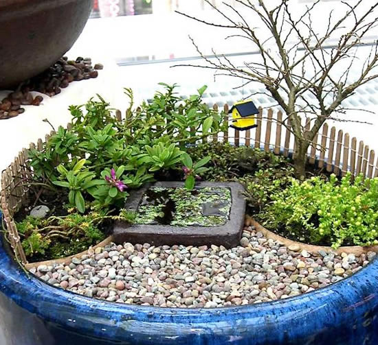 Mini jardim muito lindo e criativo