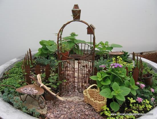 Dicas para fazer mini jardins