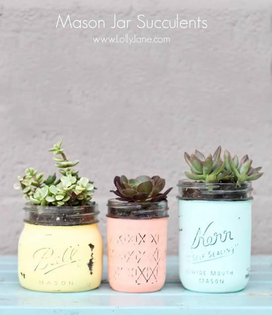 Vasos de suculentas com potes de vidro