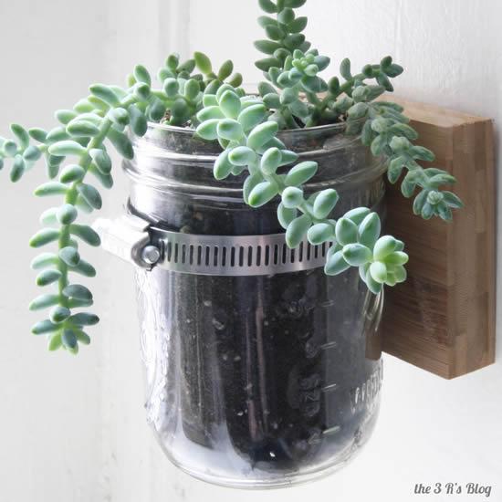 Vasos para suculentas com potes de vidro