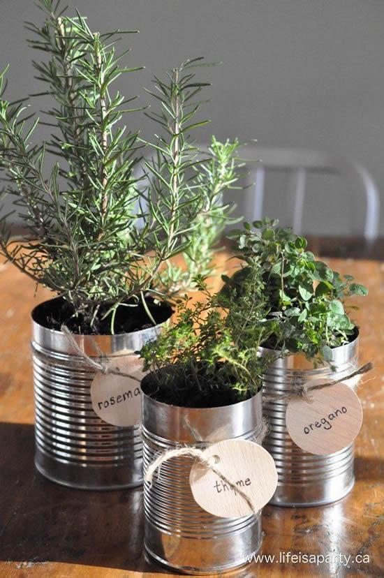 Faça sua própria horta caseira