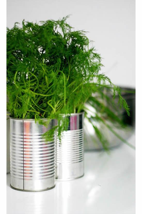 Horta linda com latas