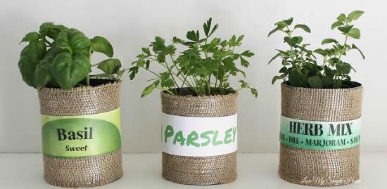 Faça sua própria horta com latas