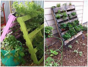 Ideias para usar pallets reciclados no jardim