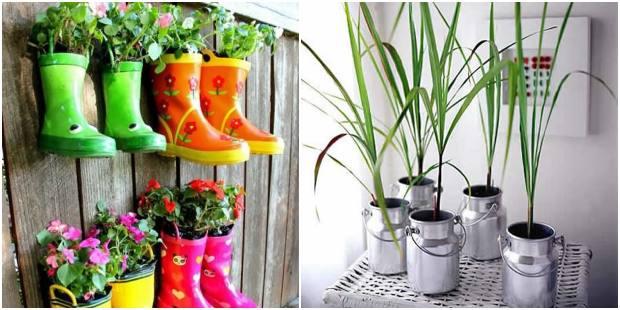 Ideias inovadoras para plantar em casa