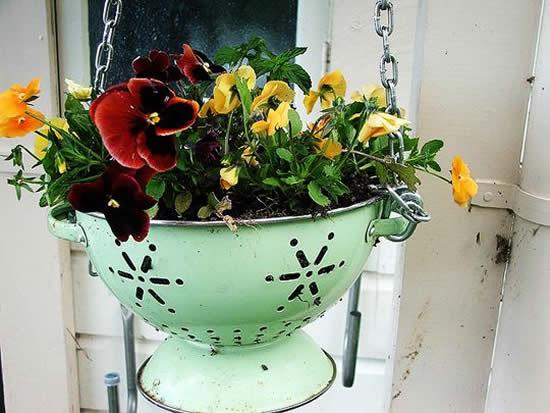 Ideia para plantar com escorredor velho