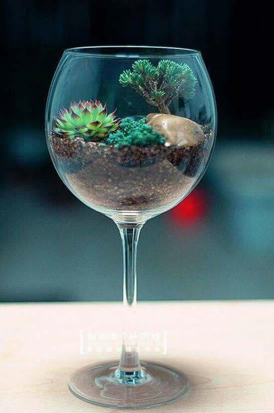 Aprenda como plantar suculentas em taças