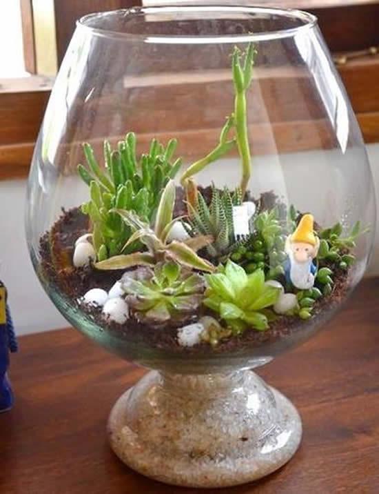 Suculentas em taças de vidro
