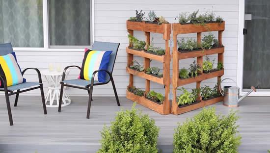 Plante em pallets