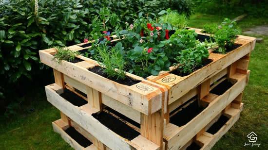 Como plantar em pallets