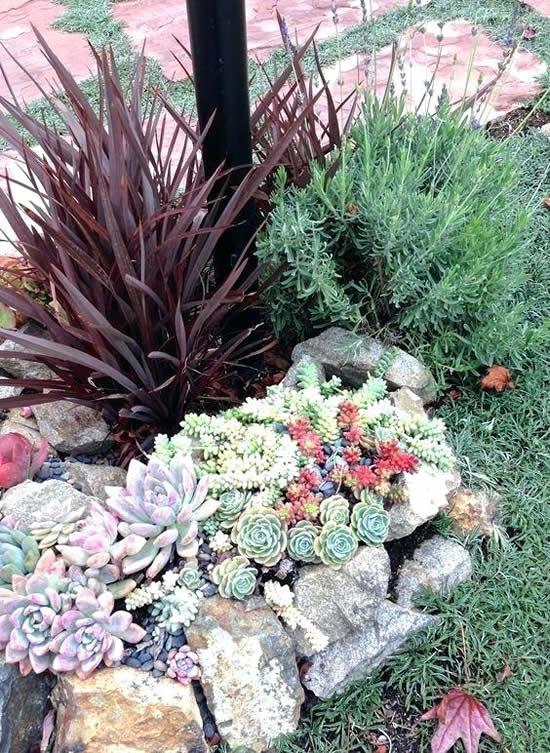 Decoração linda para jardim com pedras e suculentas