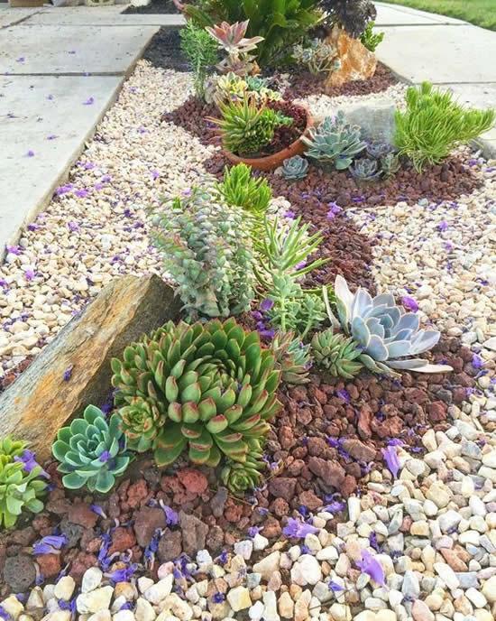 Ideias para jardim de suculentas