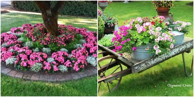 Flores no jardim para decoração