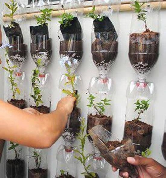 Vasos para jardim com reciclagem