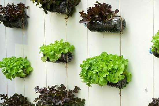 Horta com material reciclado