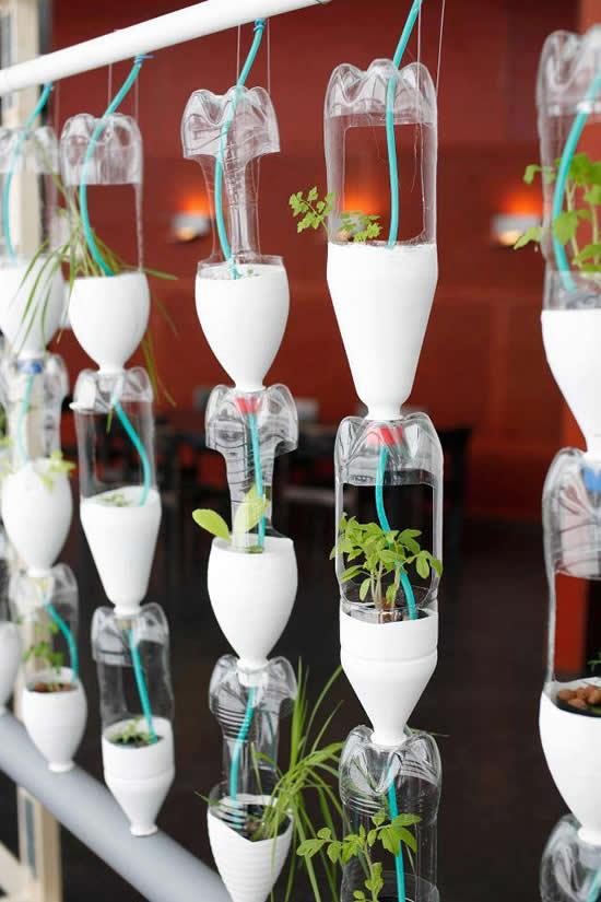 Horta com garrafas plásticas