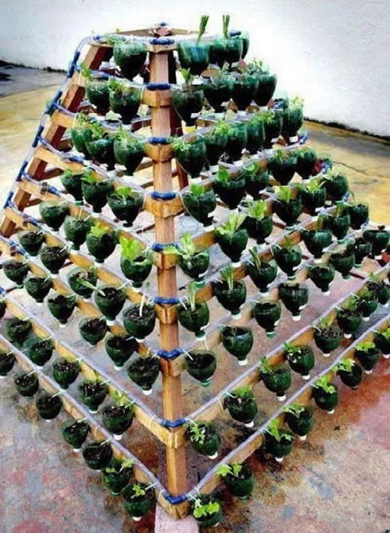 Horta Pirâmide com garrafas PET