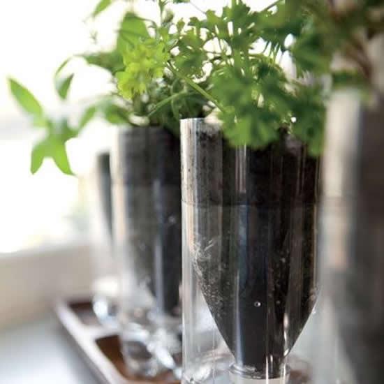 Ideias de horta sustentável