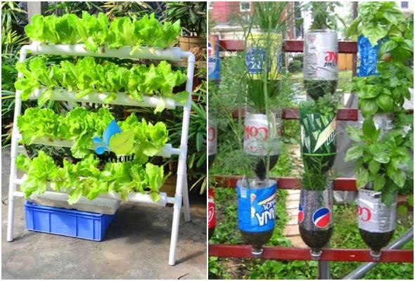 Horta sustentável - Saiba como fazer